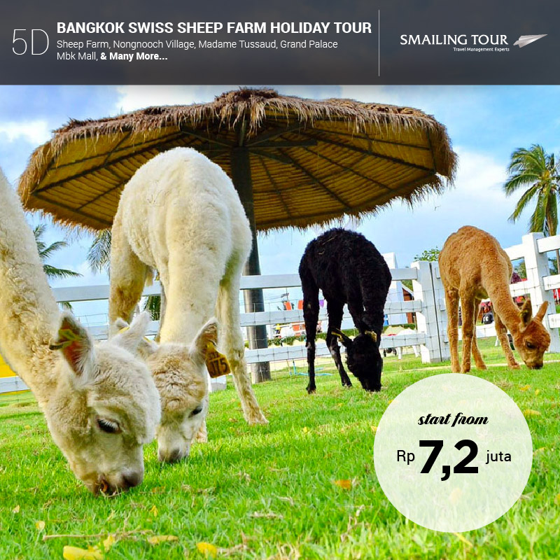 5d-bangkok-swiss-sheep-farm-holiday-tour